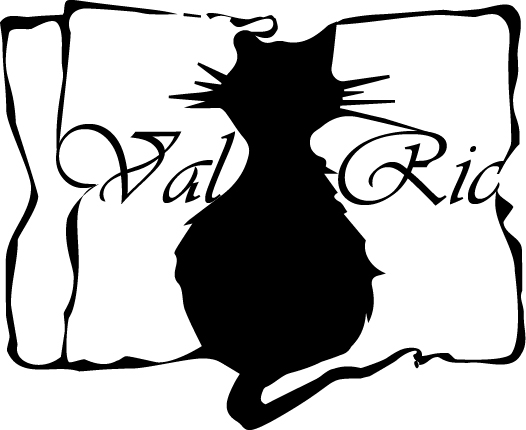 Logo VALRIC LLC NEW YORK