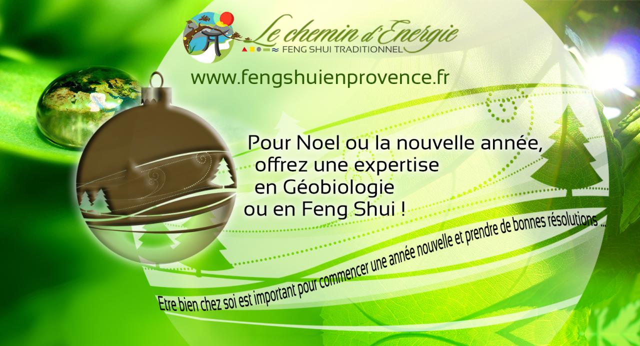 VOEUX WEB LE CHEMIN D'ENERGIE