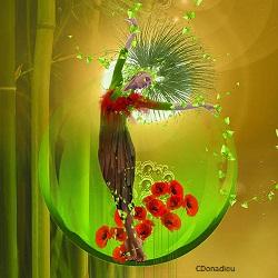 Nature web 1