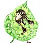 Greenlion