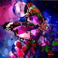 Papillon de couleursweb